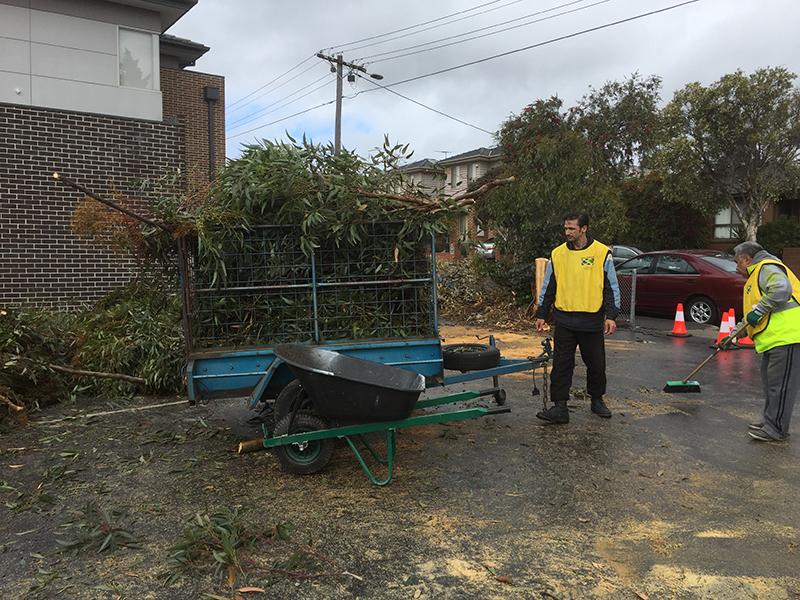 Wheelbarrow and gardening waste